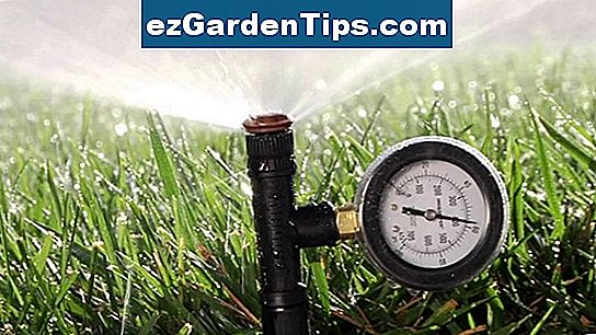 Hunter Vs. Rainbird Rotor Sprinklers