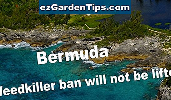 Weedkiller for Bermuda Lawns
