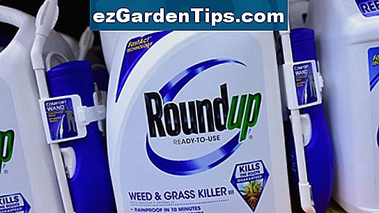 Roundup Weed Killer Danger